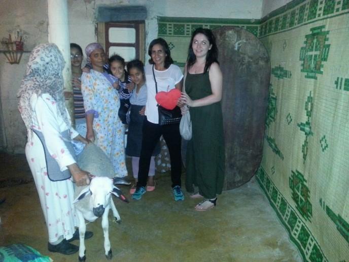 mouton et groupe aid 2014