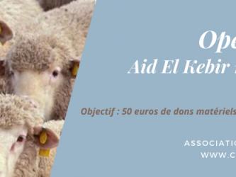 Aid moubarak said (2)
